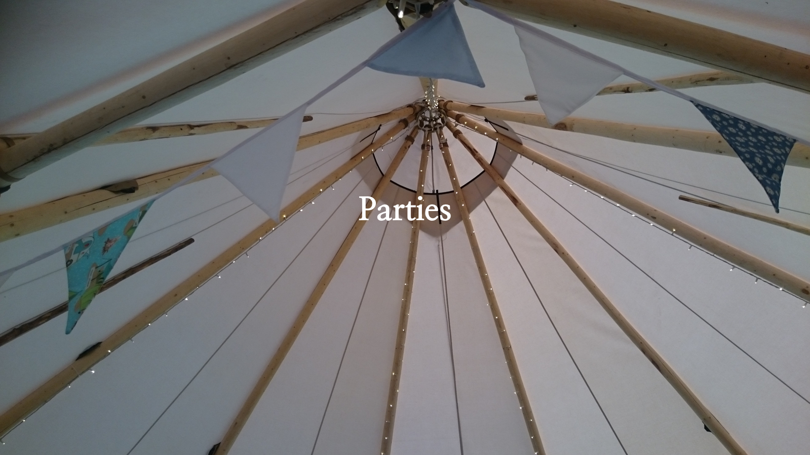 Homepage slide Parties 2.jpg