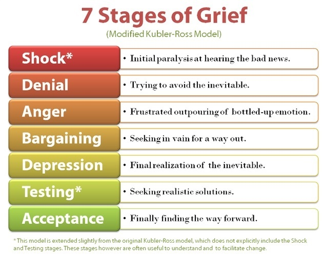 7 Stages of Grief (Modified)