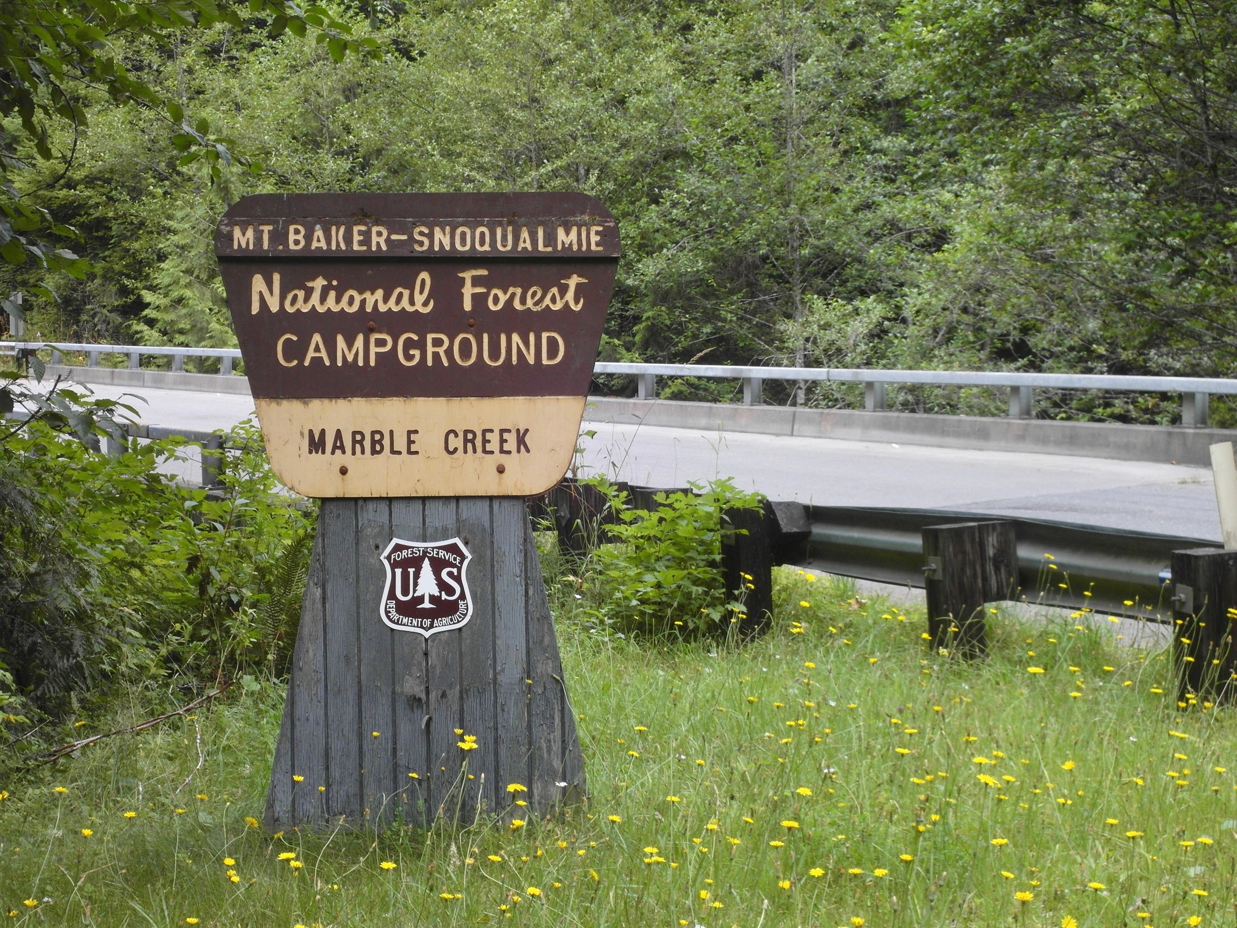 NP Mt Baker.jpg