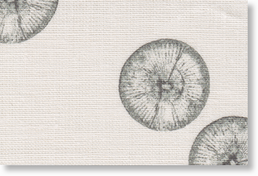 1001-07-A  oyster 100% eco linen