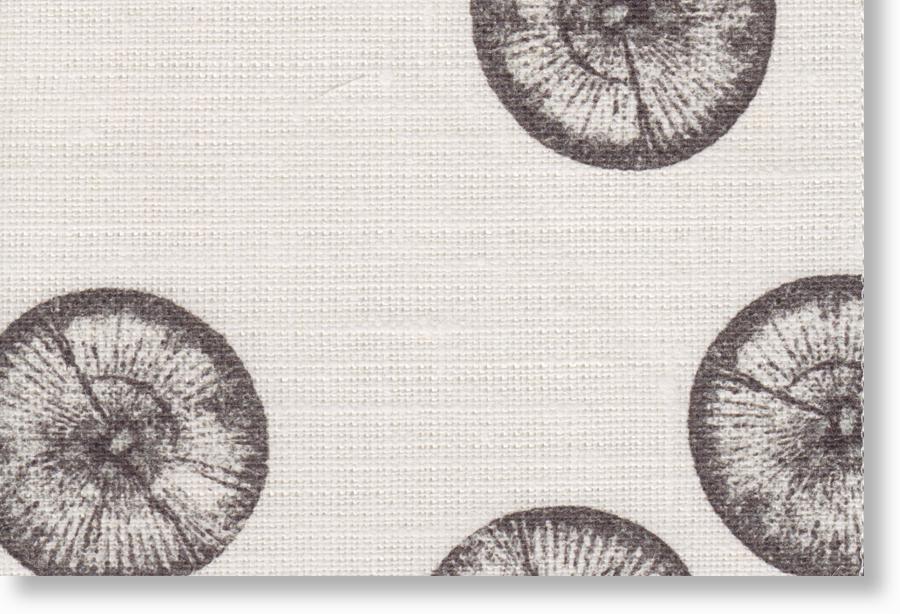 1001-13-A silt 100% eco linen