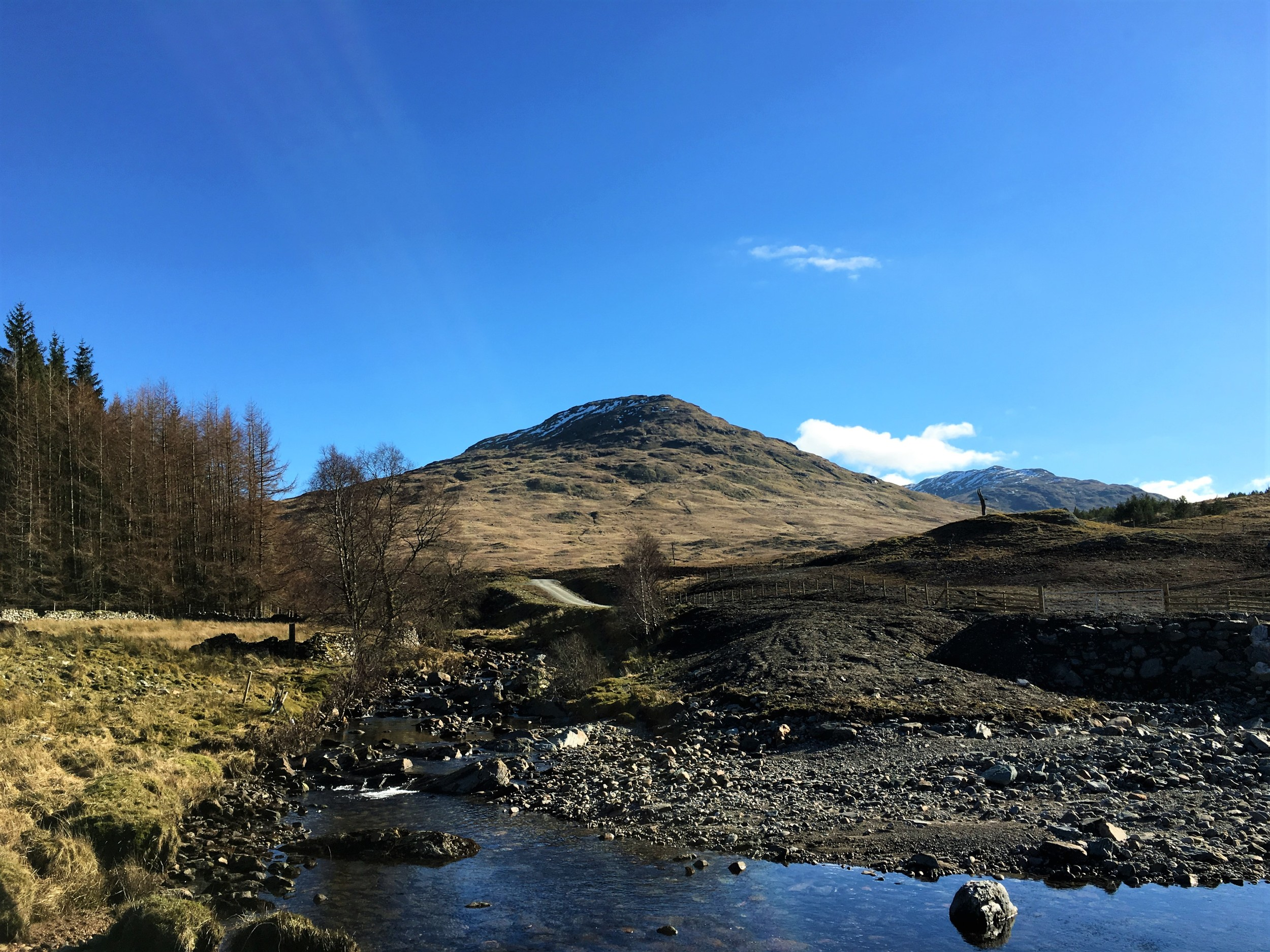 Sron Gharbh just south of Crianlarich produces some great walking and isn't far from the old Caledonian Pine Forest