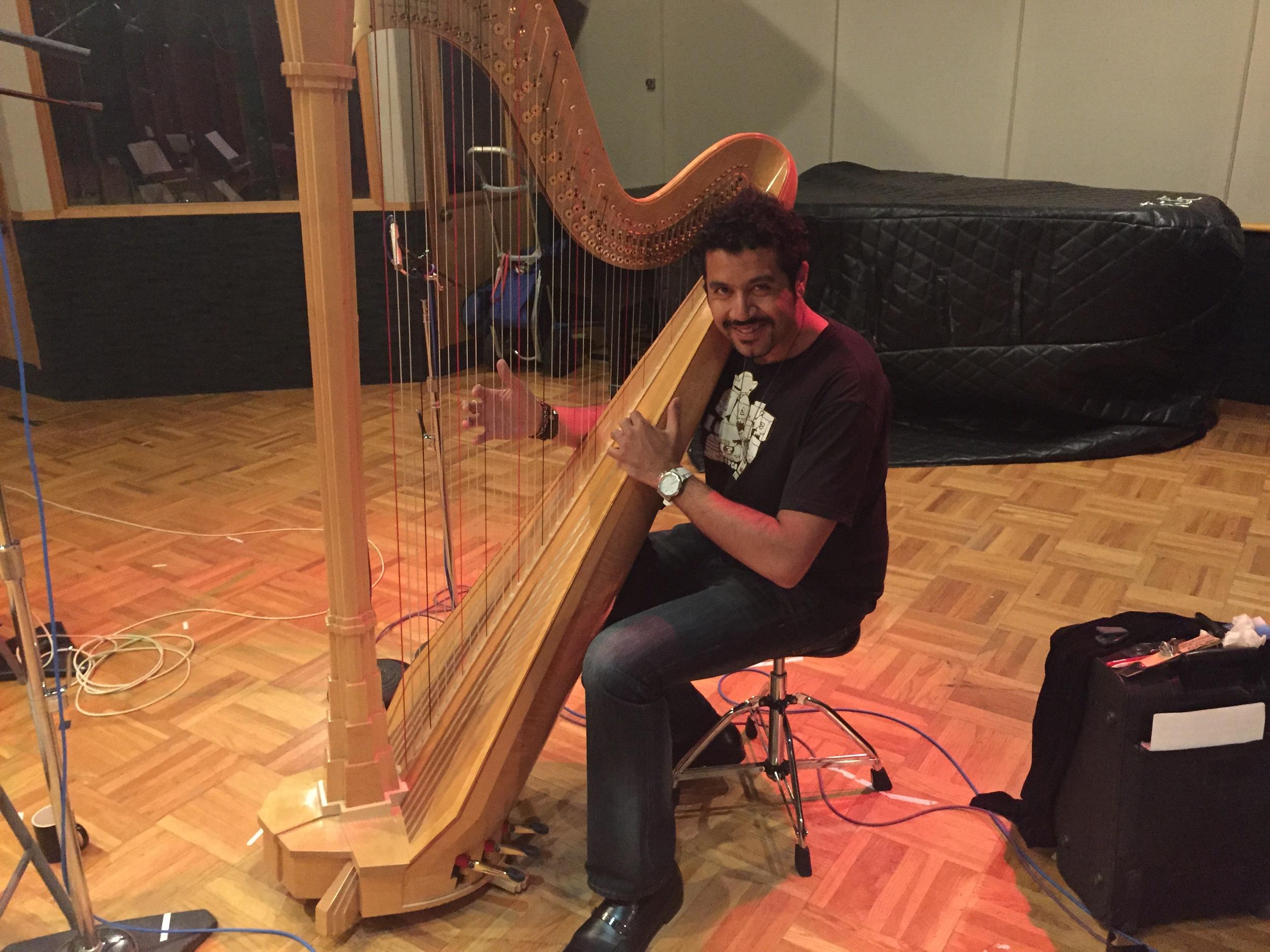 I like harp.JPG