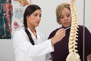 chiropractor-teaching-200-300