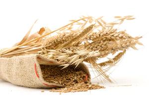 whole-grains-200-300