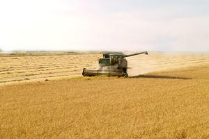 machine-in-the-field-200-300