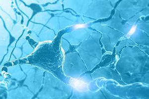 Neuron Energy