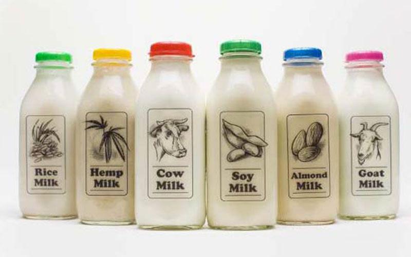 dairy-3.jpg
