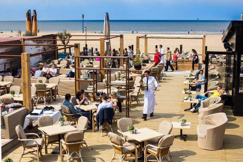 Oceans Beach House LowRes-1.jpg
