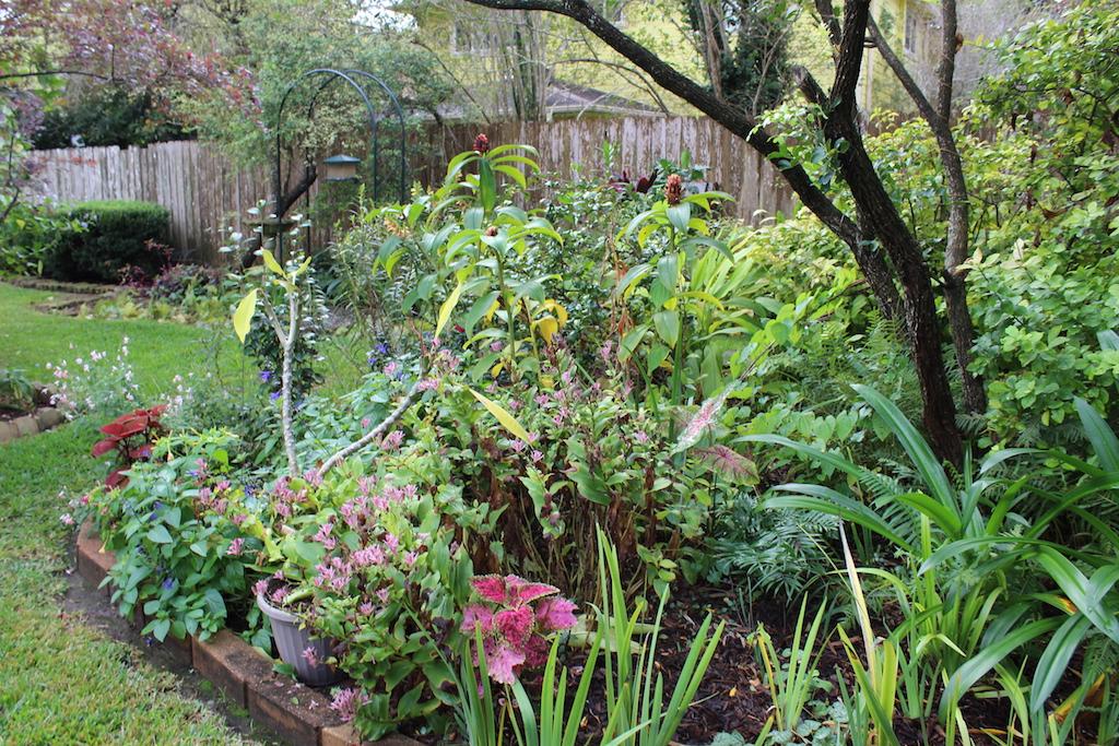 Garden of Marsha and Bobby Strain