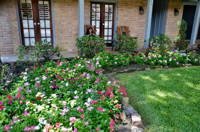 Guerrero Garden 2.jpg