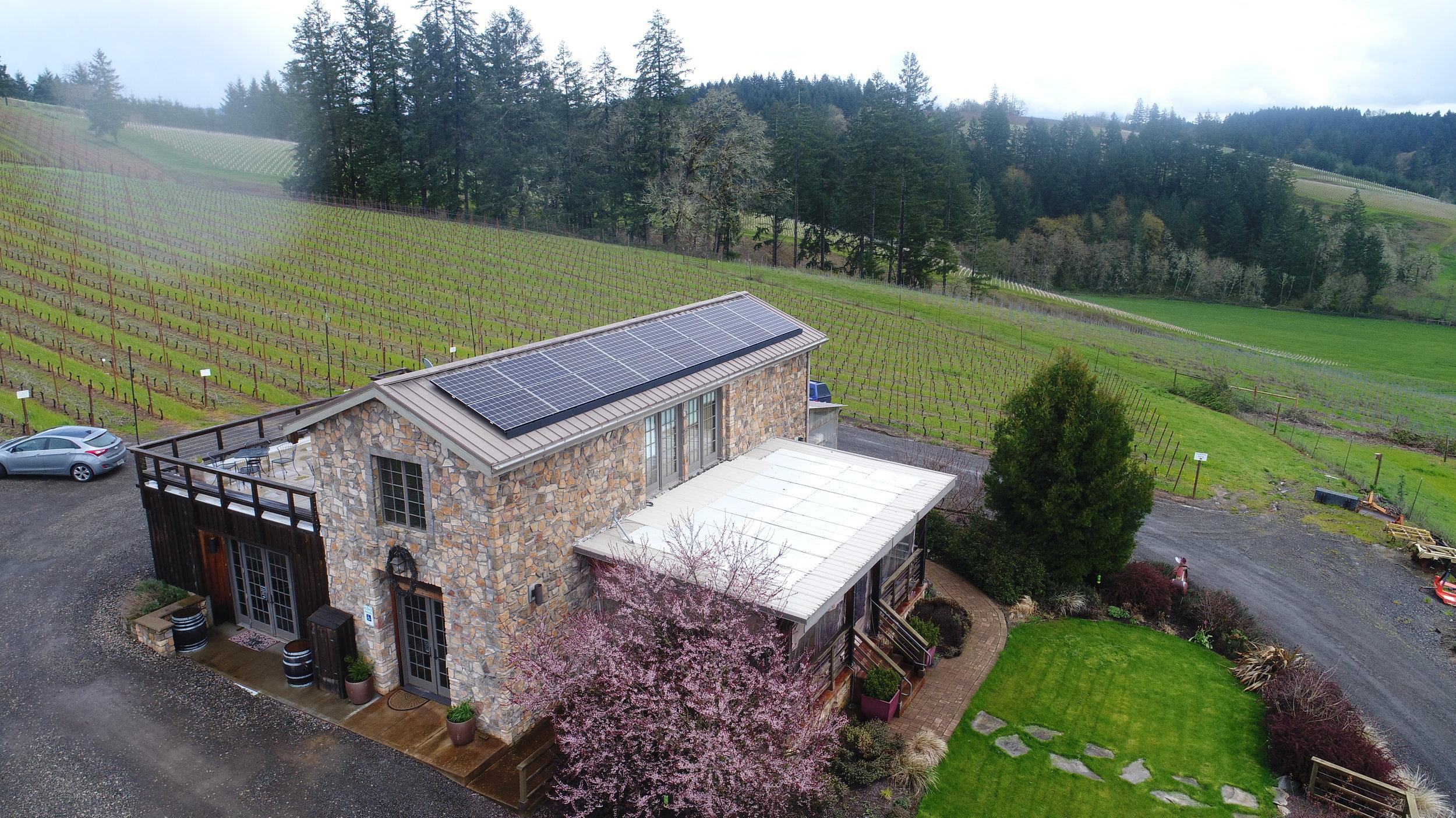 Elemental Energy - Lenne Vineyards - Oregon