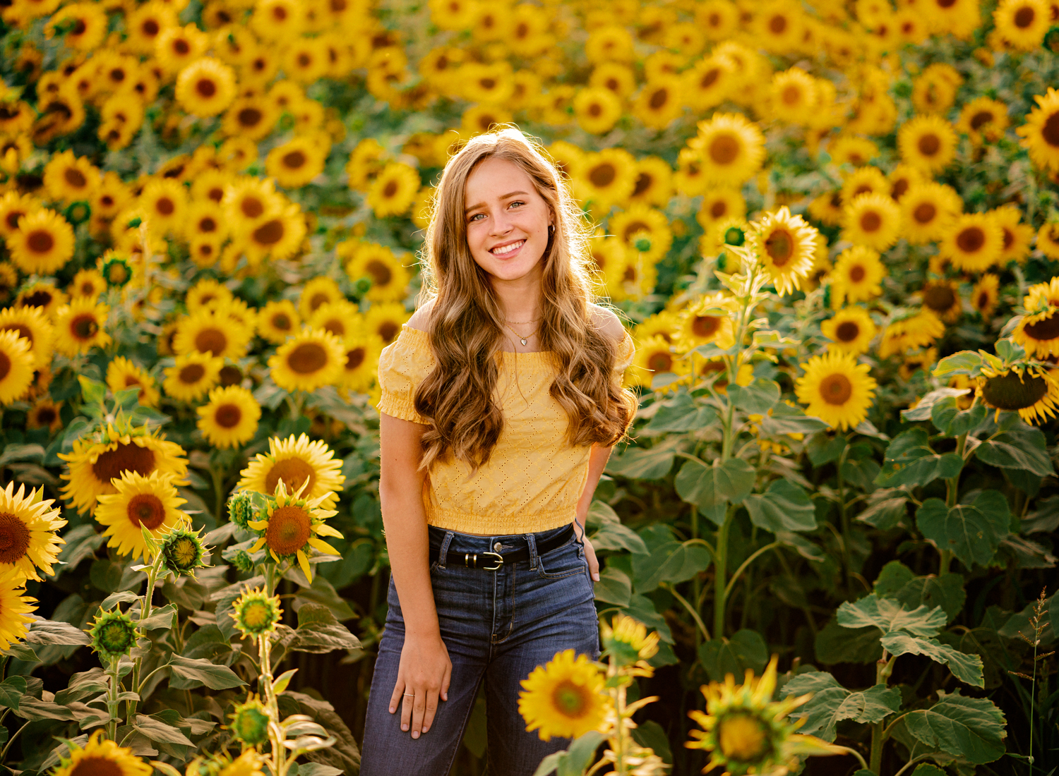 fun portrait of blonde ramstein high school senior girl in yellow croc top and jeans in sunflower fields with natural light at sunset by kmc family photographer sarah havens