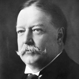 Taft - Perky Walrus