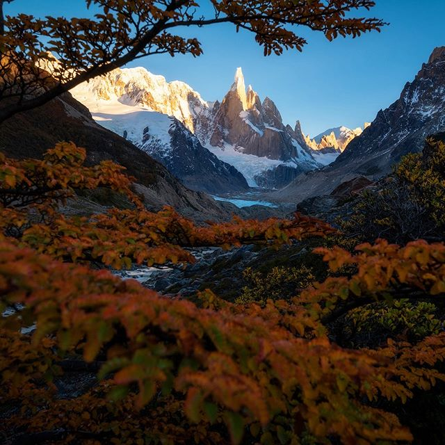 A view of Cerro Torre through the autumn colors of Patagonia.  These mountains are simply magical.  #patagonia #patagoniaargentina #nikonnofilter #d850  #pocket_world #ig_landscape  #dream_spots #visual_heaven #landscapephoto #landscape_lover #natgeoadventure #earthexperience #mthrworld #majestic_earth  #igworldglobal #ilovenature #ig_divineshots #EarthOfficial  #earth_shotz #marvelshots #theworldshotz #discoverglobe #landscapelover #landscapehunter