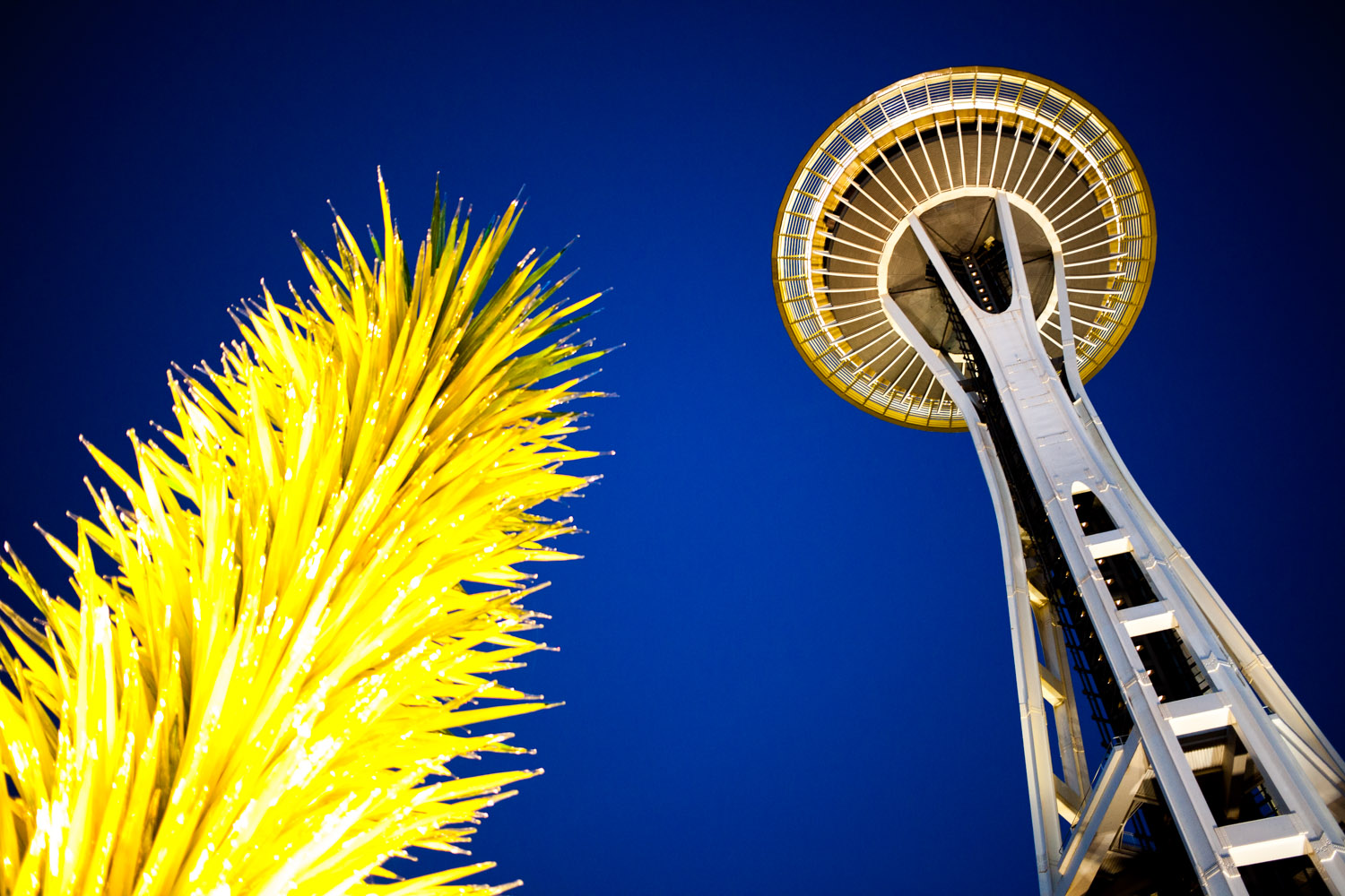 Chihuly Garden & Glass and the Space Needle.