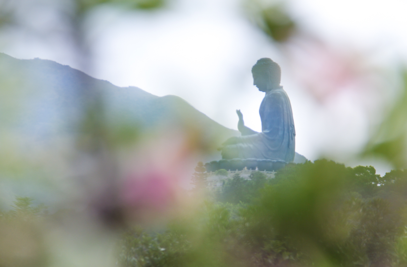 The Tian Tan Buddha on Lantau Island. Photo by DY