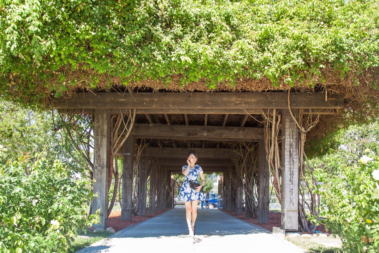 Strolling through the SJ Rose Garden | via The Chic Diary