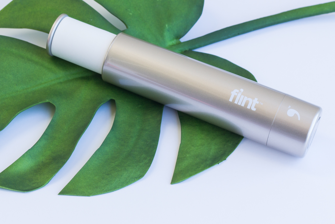 Flint Lint Roller | The Chic Diary
