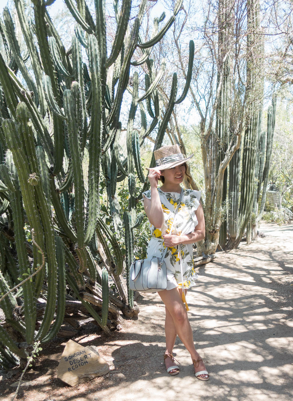 Moorten's Botanical Garden in Palm Springs, CA | The Chic Diary