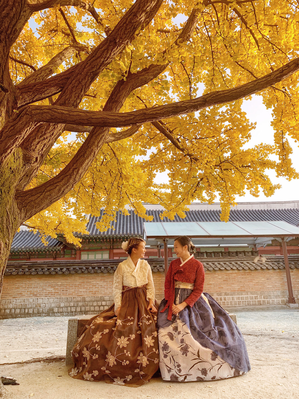 Yellow Fall Leaves in Gyeongbokgung Palace | Seoul, Korea Travel Guide | The Chic Diary