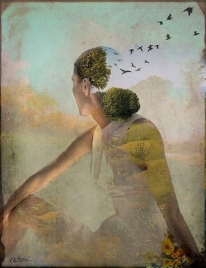- source: Summer Dreaming by Catrin Welz Stein