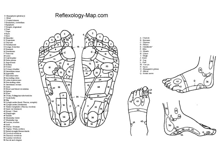reflexology_foot_map