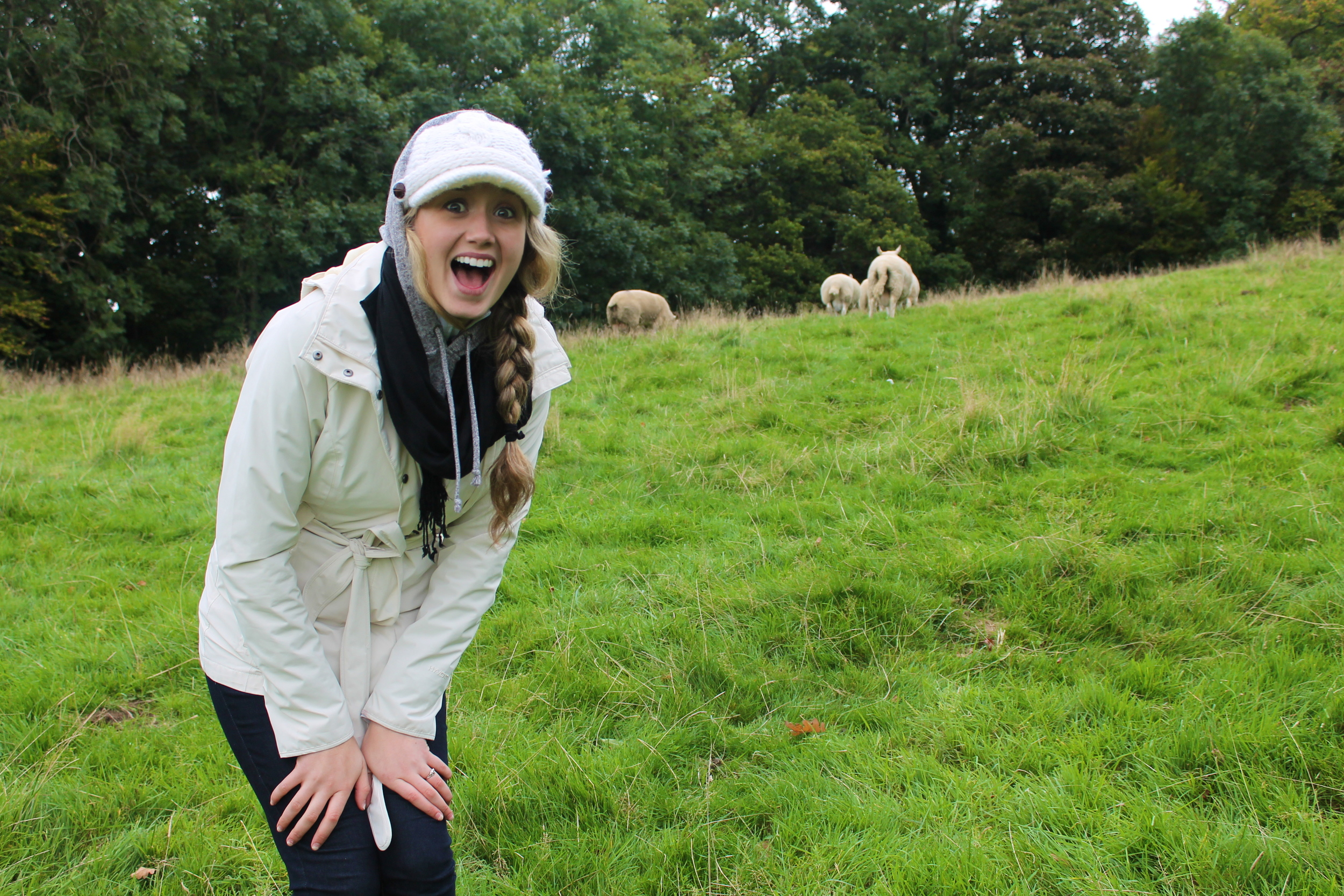 Kaci Nicole - Lake District - Keswick Sheep
