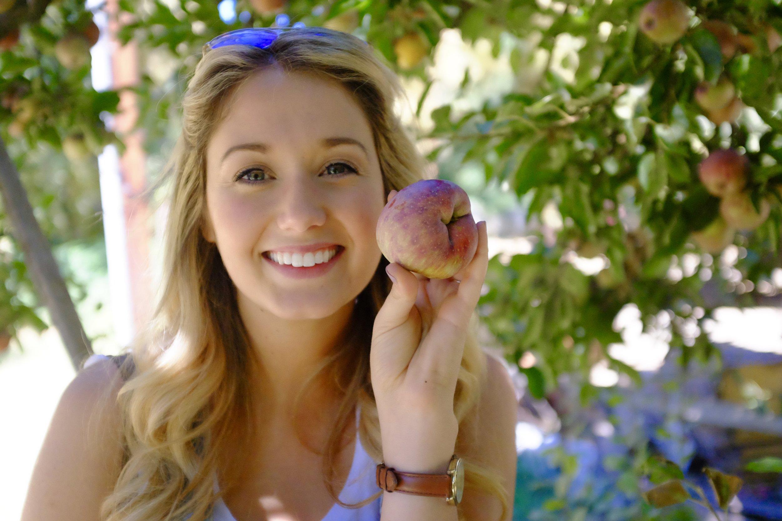 Apple Picking at Riley's Apple Farm, Yucaipa CA | Kaci Nicole