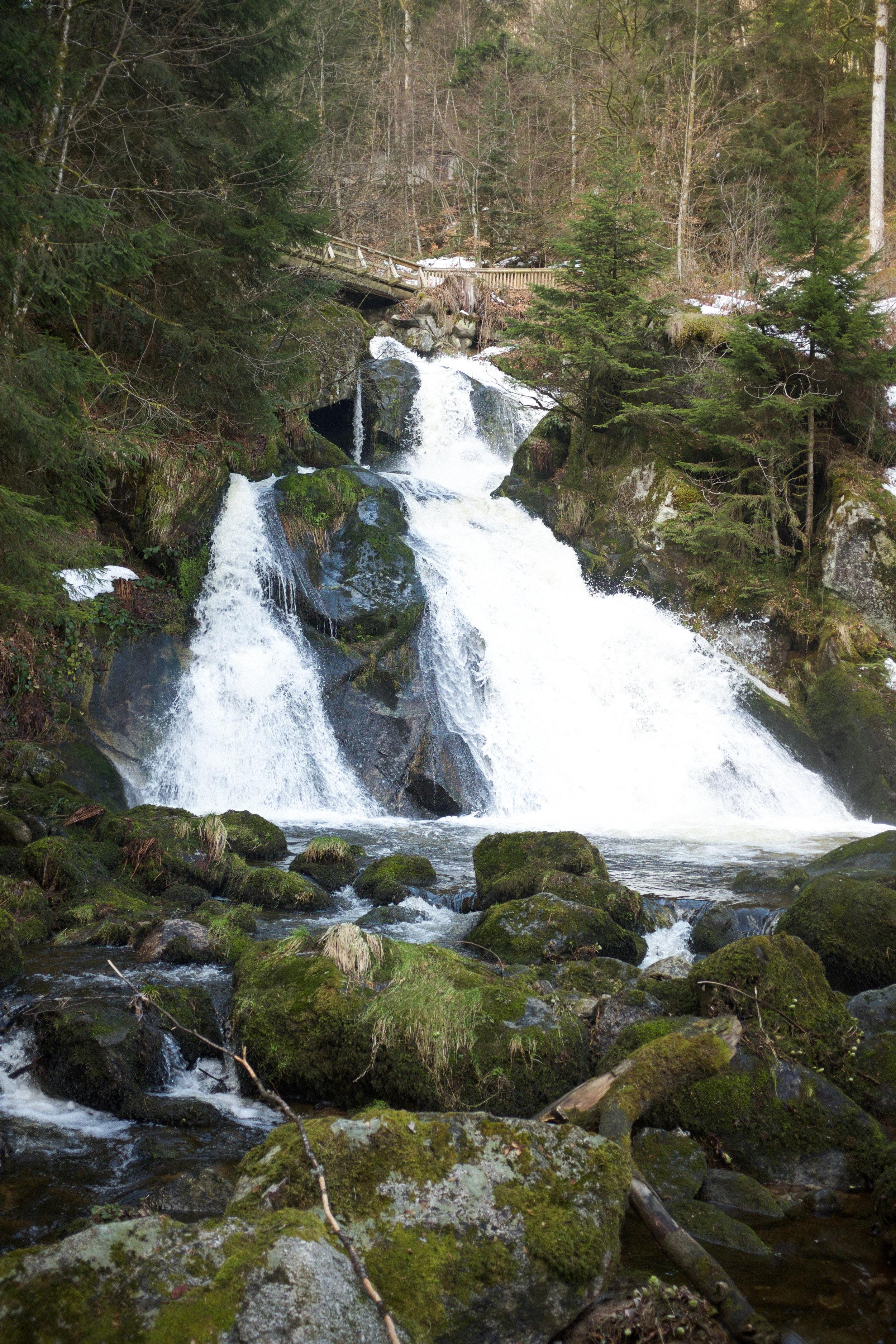 Black Forest Waterfall | Kaci Nicole.jpg