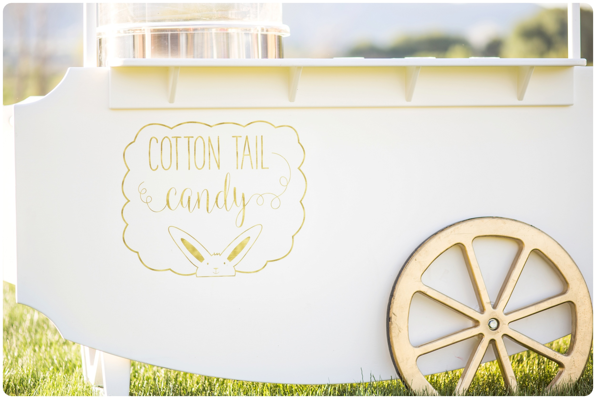 Cotton Candy for your wedding reception