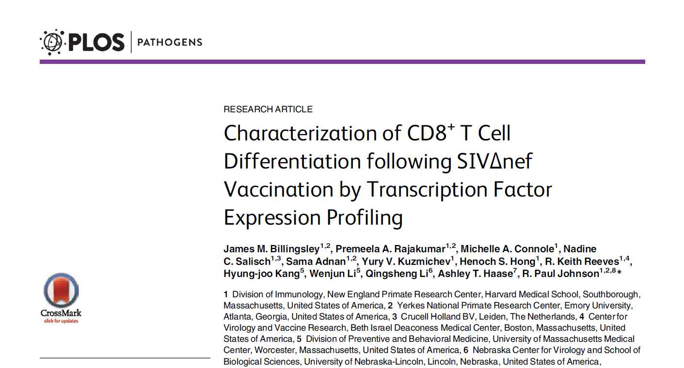 Characterization of CD8+ T Cell Differentiation following SIVΔnef  Vaccination by Transcription Factor Expression Profiling