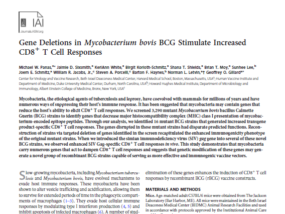Gene Deletions in Mycobacterium bovis BCG Stimulate Increased CD8 T Cell Responses