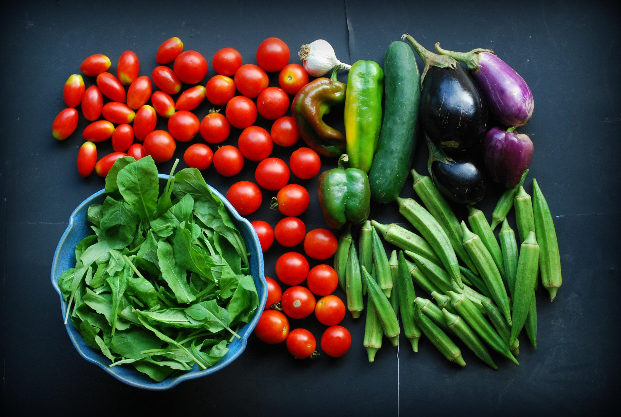 Week 19: Arugula, Campari tomatoes, Juliet tomatoes, garlic, bell peppers, okra, eggplant, cucumber.