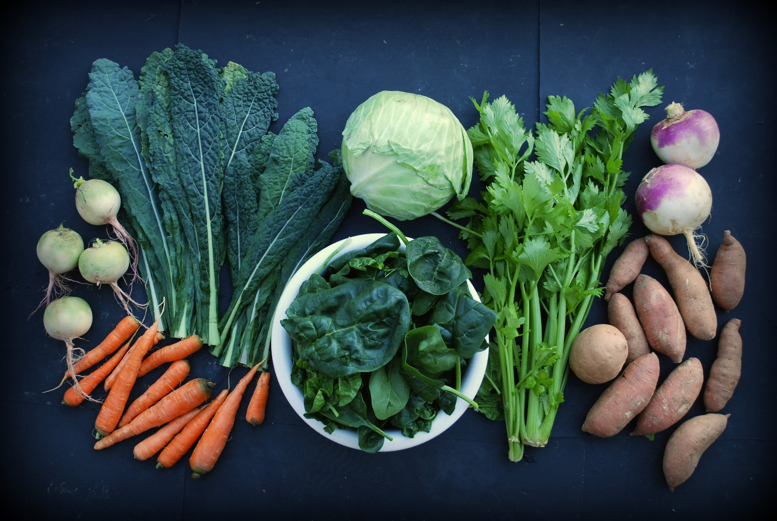 You Week 12 Share: Watermelon radishes, carrots, dinosaur kale, spinach, green cabbage, celery, turnips, sweet potatoes.