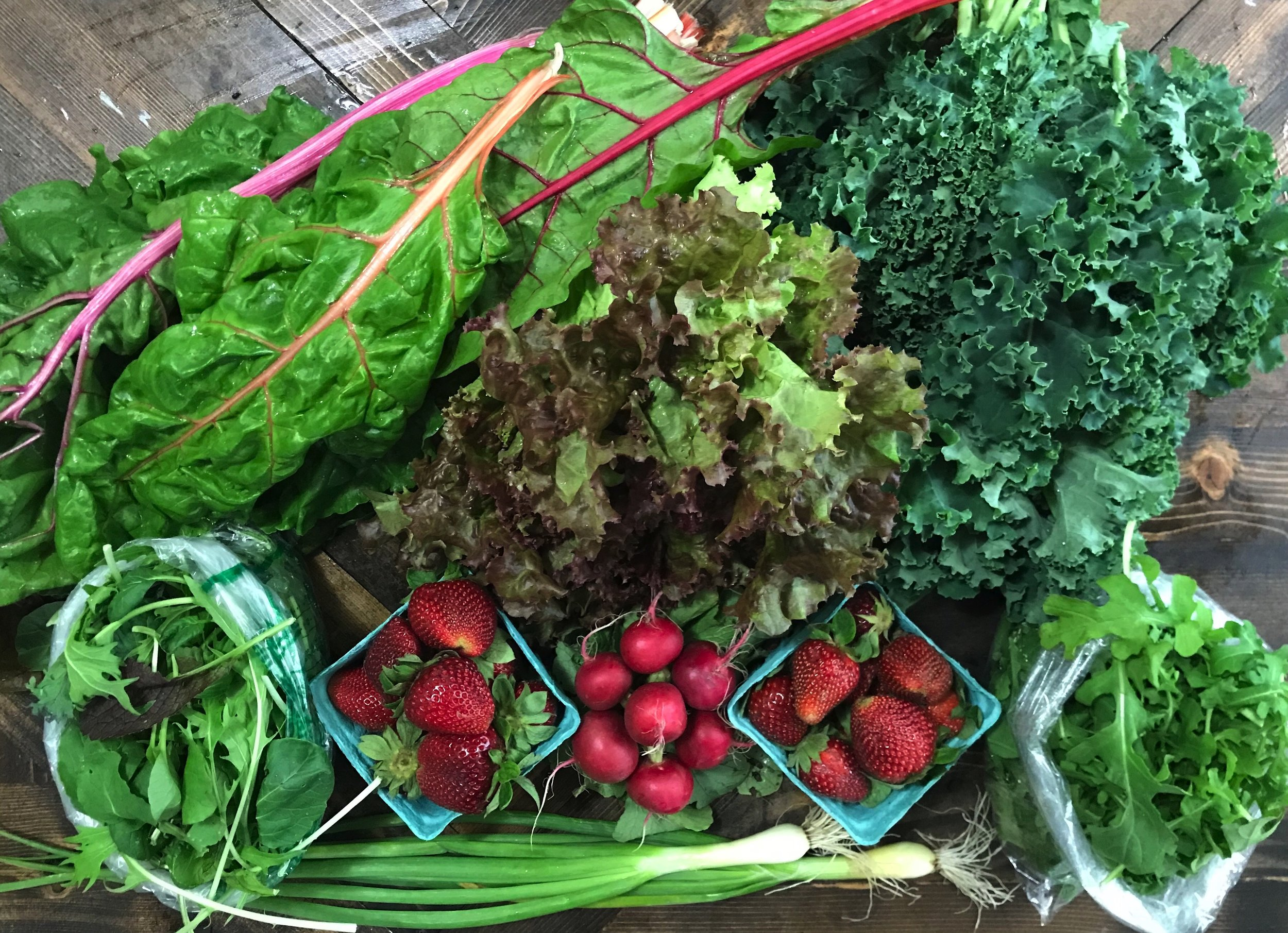 Weekly Share - 1 bunch of chard, 1 head of lettuce, 1 bunch of curly kale, 1 bag of salad mix, 1 bag of arugula, 1 bunch of radishes, 2 pints of strawberries