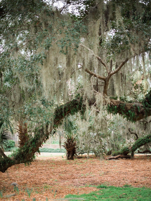 Brookgreen Gardens 72.jpg