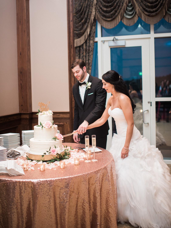 alexgreg-wedding-reception-christinadavisphoto213.jpg