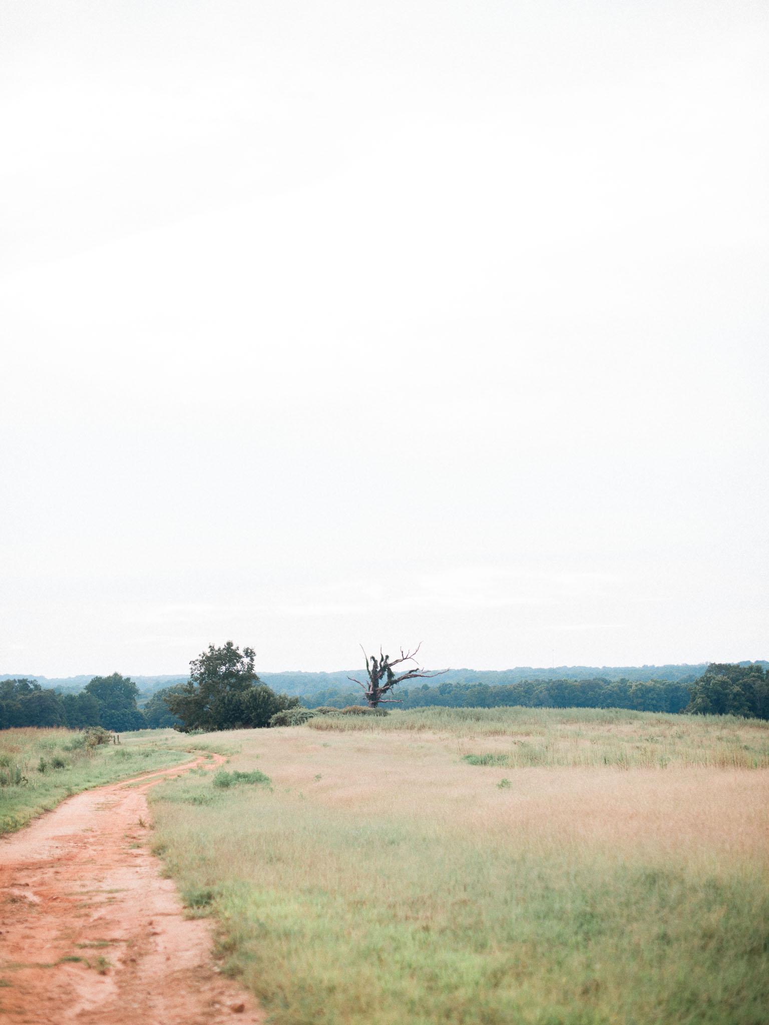 lexietrent-engagement-christinadavisphoto157.jpg