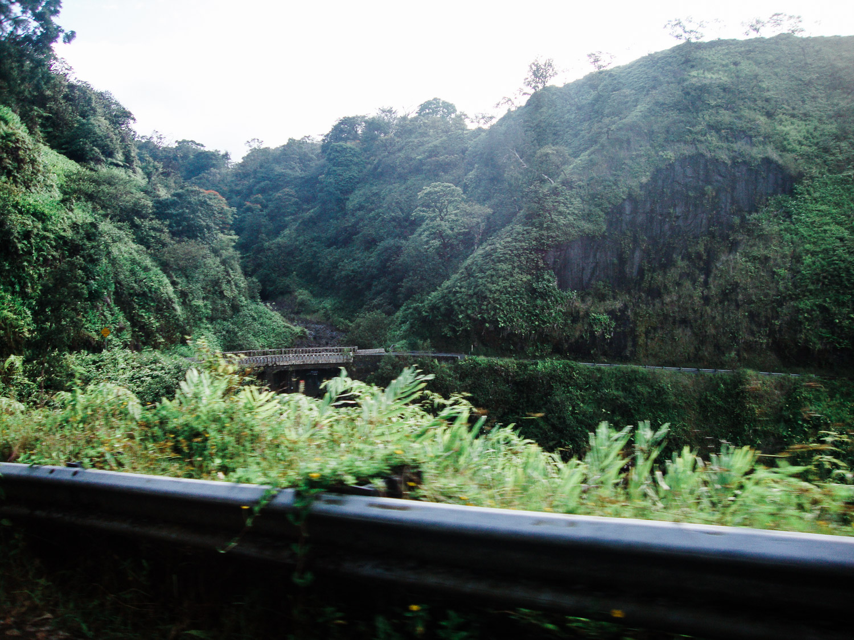 maui-hawaii-christinadavisphoto-02.jpg