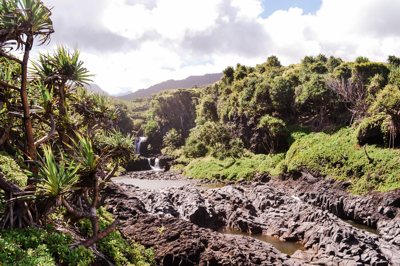 maui-hawaii-christinadavisphoto-49.jpg