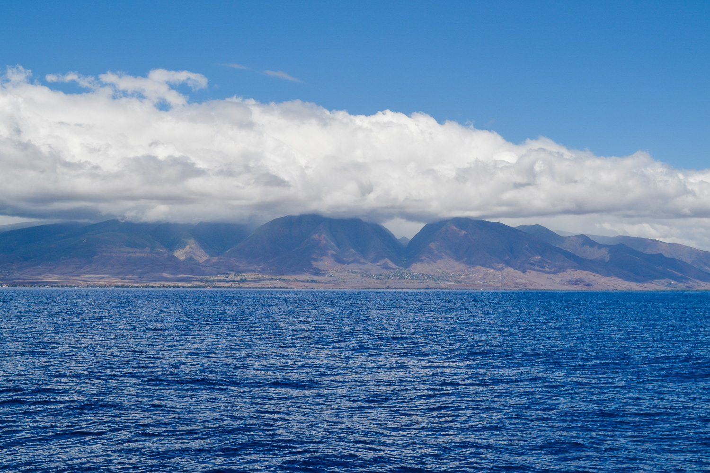maui-hawaii-christinadavisphoto-35.jpg