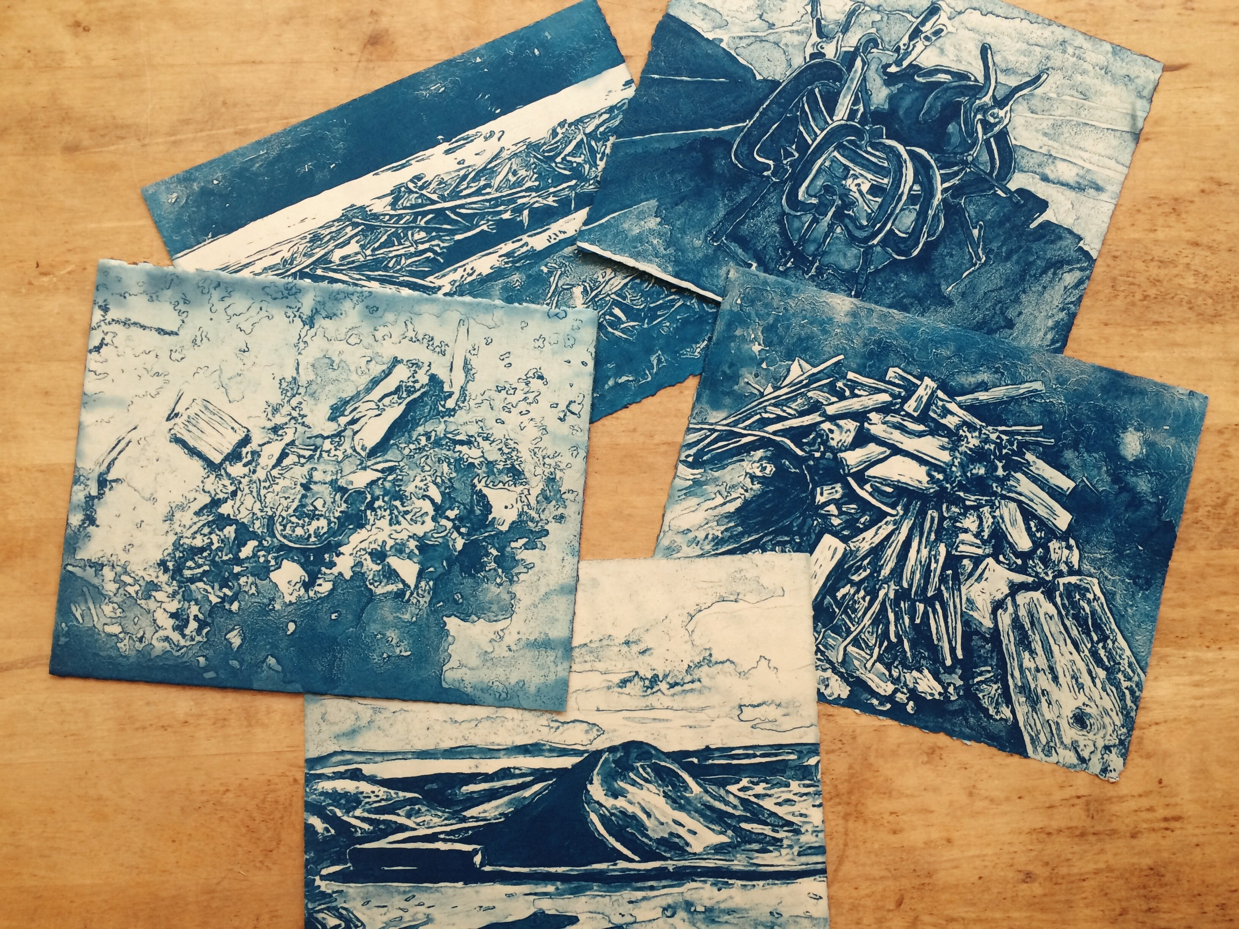 VinCyanotypes.JPG