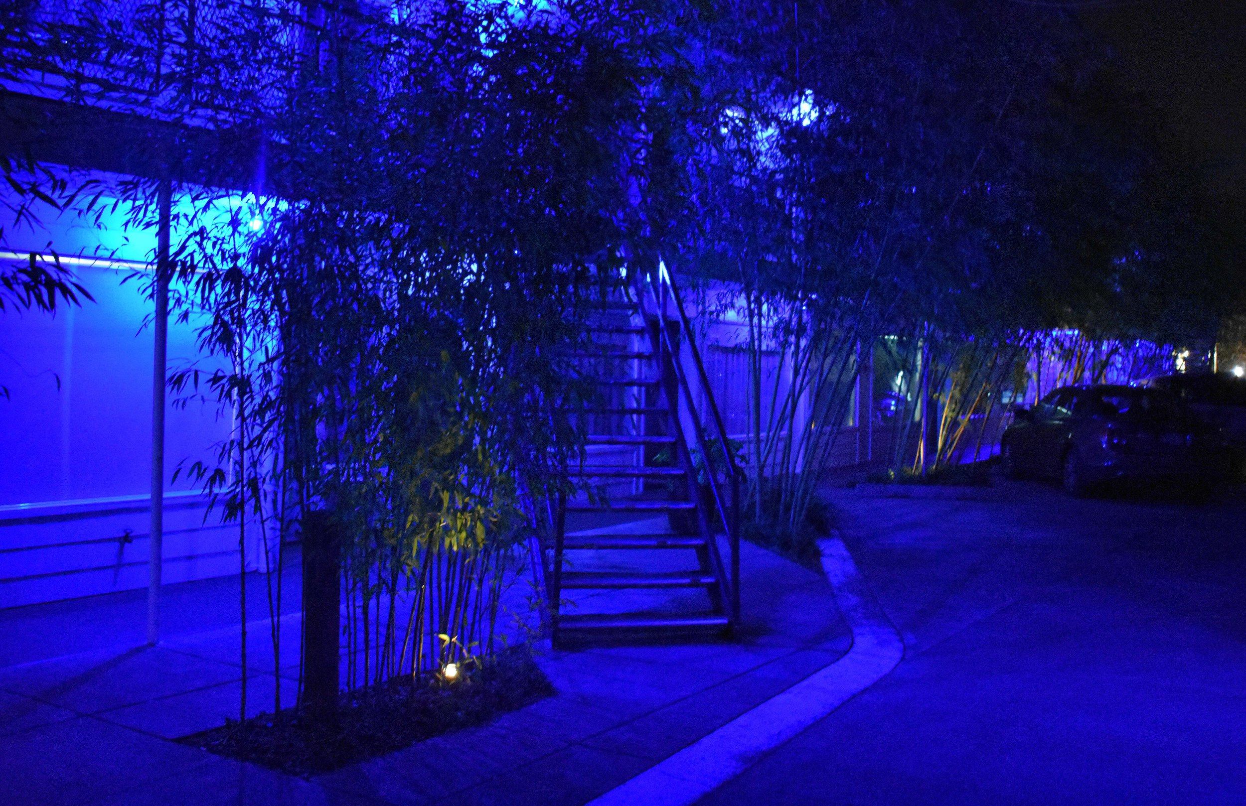 The vibe of Jupiter Hotel at night was just as fun and as the hotel itself, I particularly loved the blue lights (seemed to be the perfect way to add a whole new vibe to the outside of a renovated motel). The bamboo plants around the parking lot also gave the rooms on the ground floor a bit of privacy.  Addtionaly you'll find in the parking lot near the lobby of Jupiter Hotel, an electric car charging station.