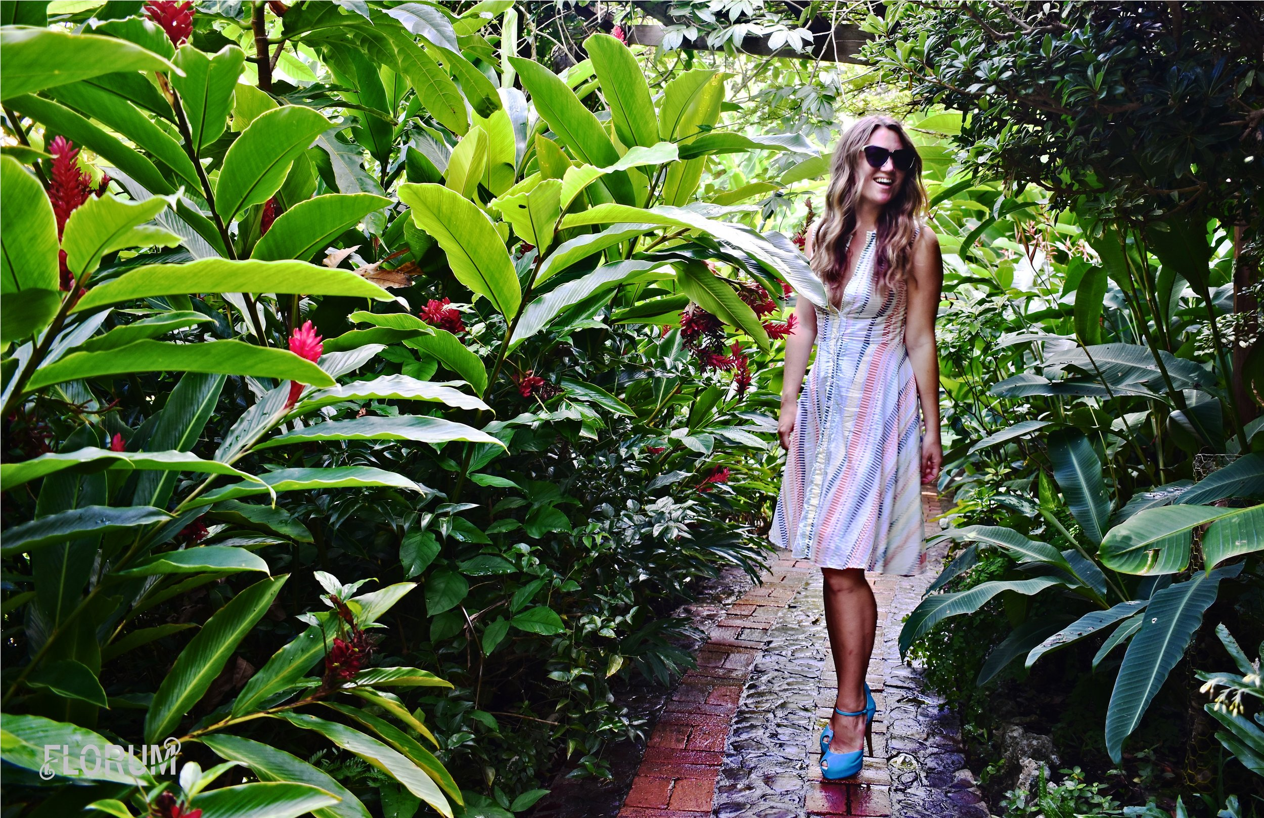 Just a short 15 minute walk from the ECO Lifestyle + Lodge is the beautiful Andromeda Gardens. For only a few Eastern Caribbean dollars I spent a few hours walking around and taking in the beautiful gardens and the flora.