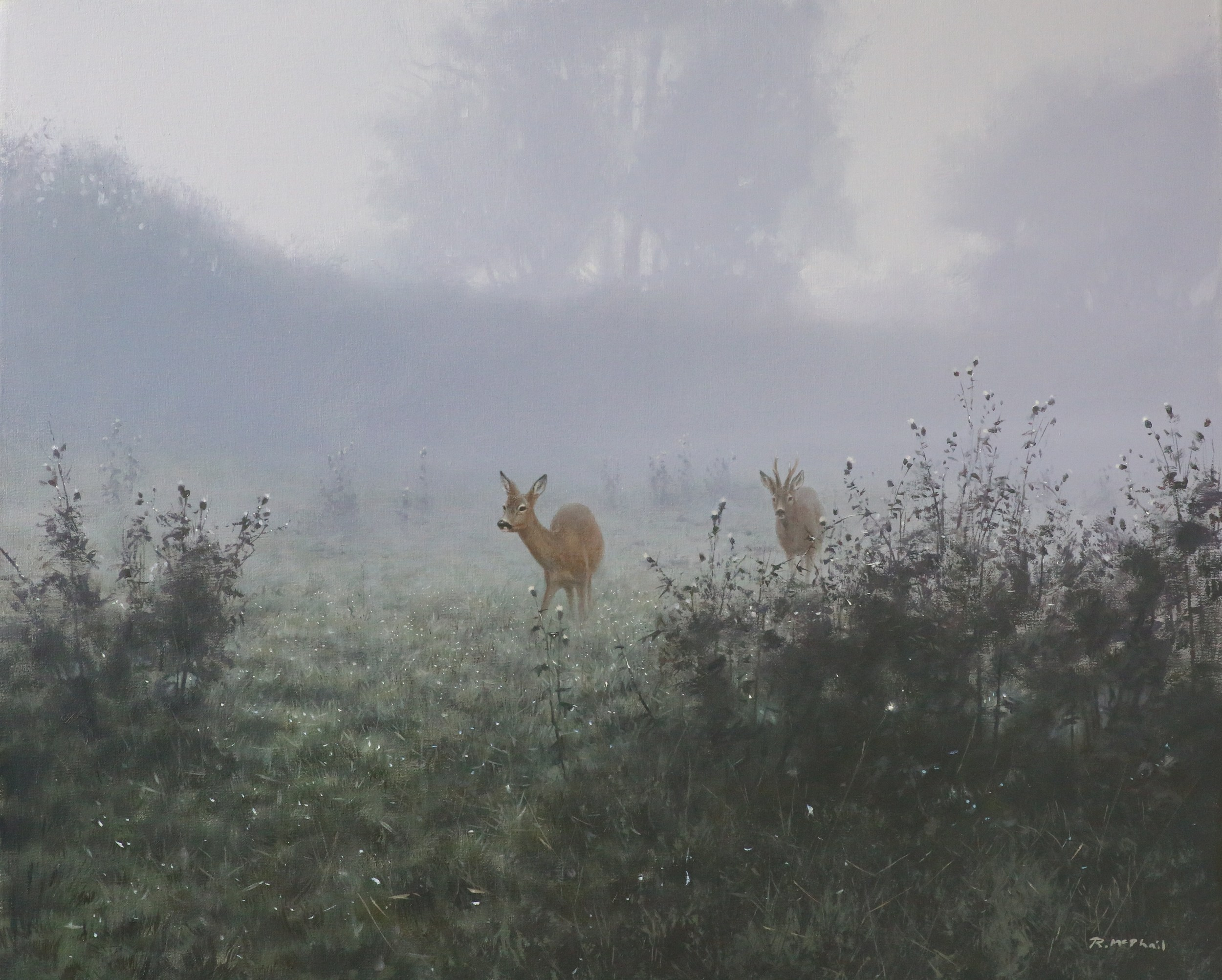 Roe Deer in the Mist