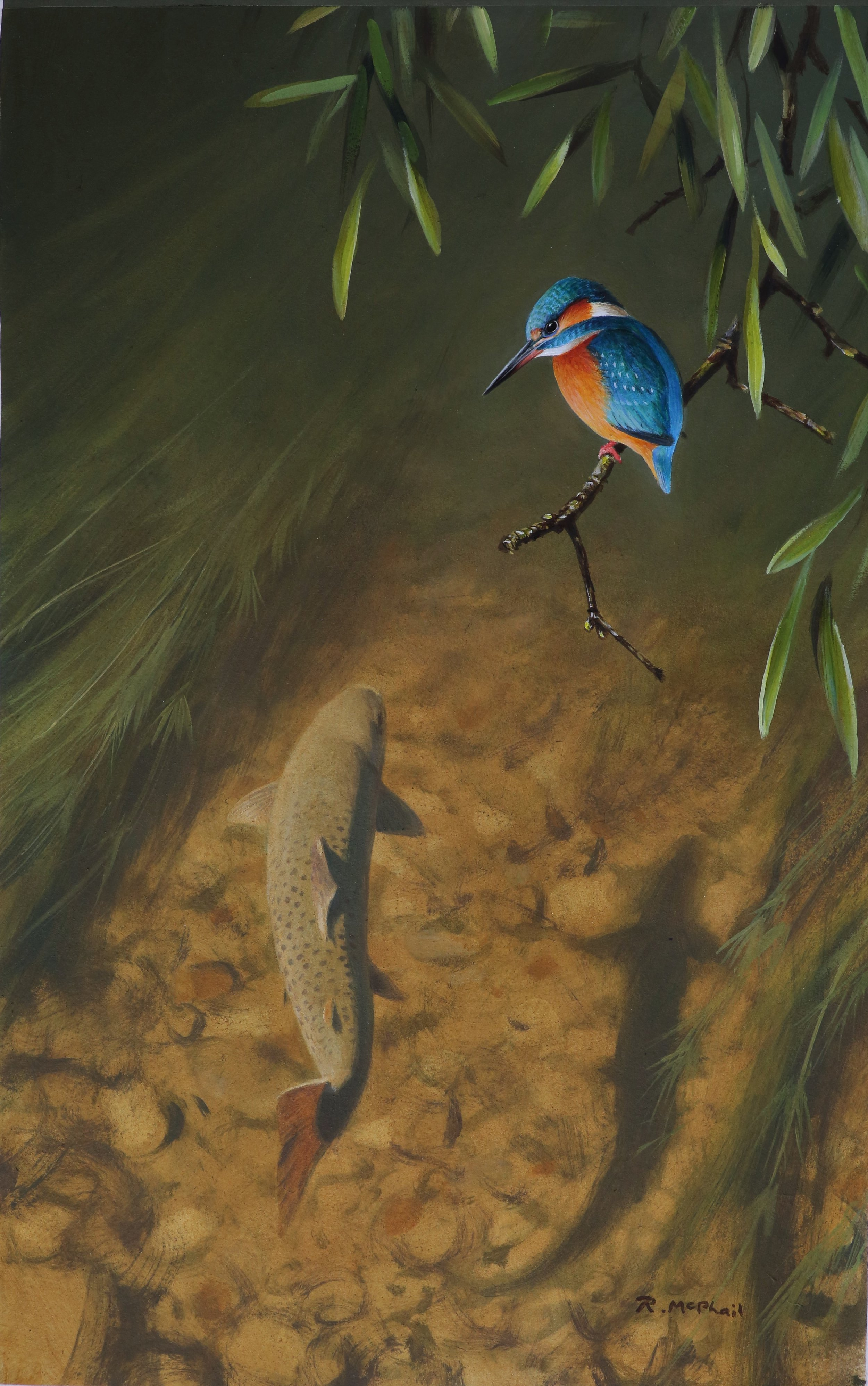 Trout and Kingfisher