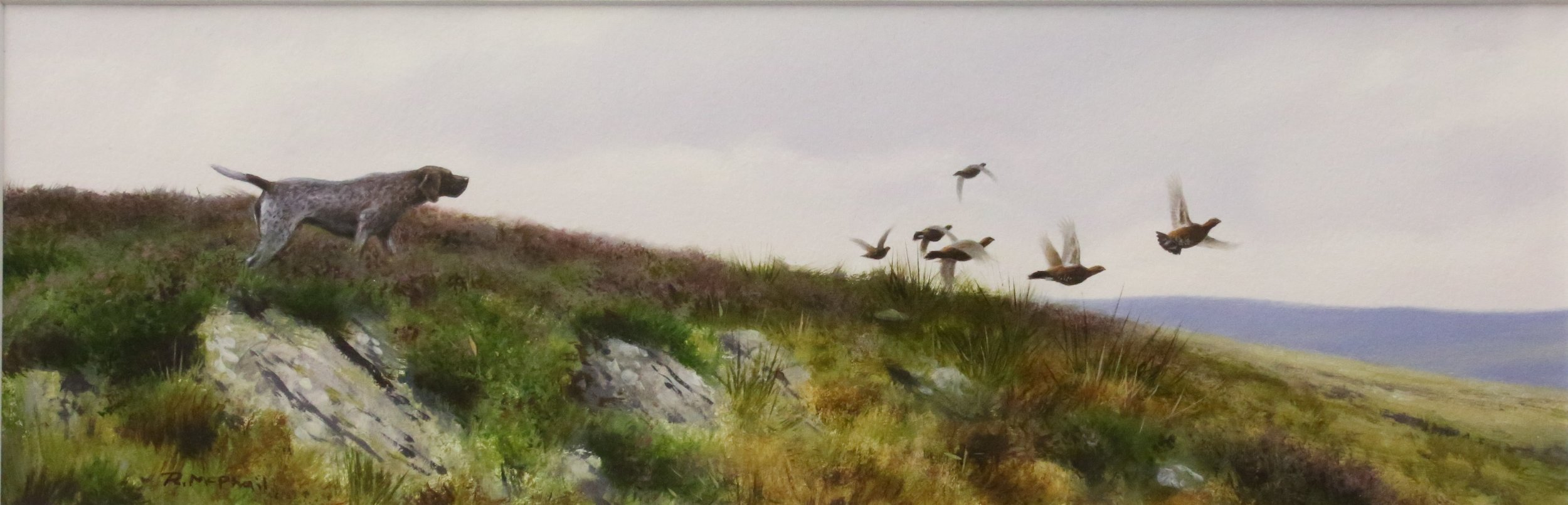 Pointer with Grouse