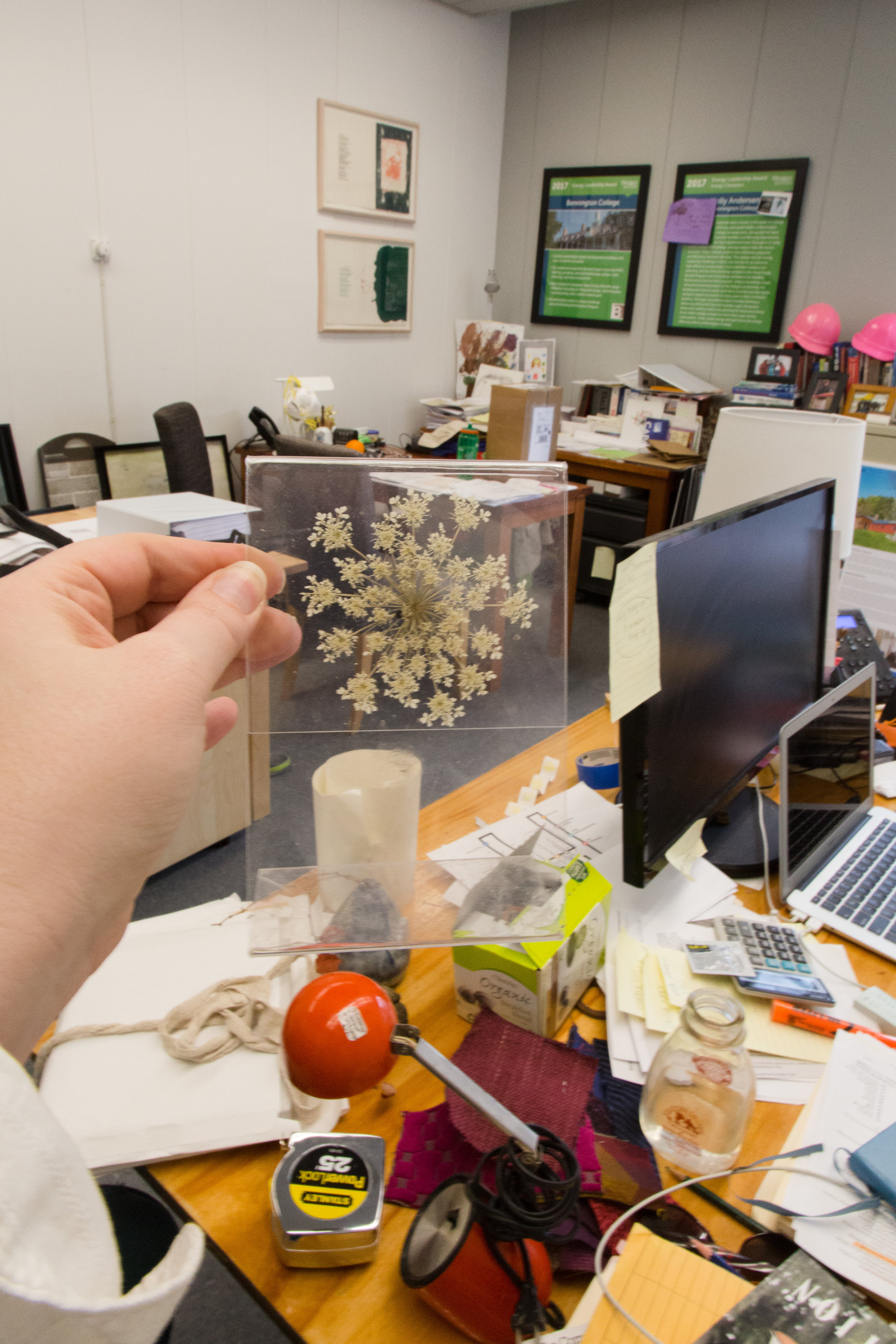 """Common Artifacts: The Art of Reuse - Erin McKenny is a collector, and everyone knows it. She collects walnuts and acorns, pressed Queen Anne's lace, old mailbox numbers, felt samples, and quaint little """"Made in Vermont"""" package stickers. Her office, shared with project manager Holly Andersen, is a cornucopia of textures and treasures sourced from across campus—Andersen, the big and rustic: steam pipes, paned windows, a box of hard hats. McKenny, the wild and small: a splintered wooden E, a """"ringer"""" box, campus posters. [the full story]"""
