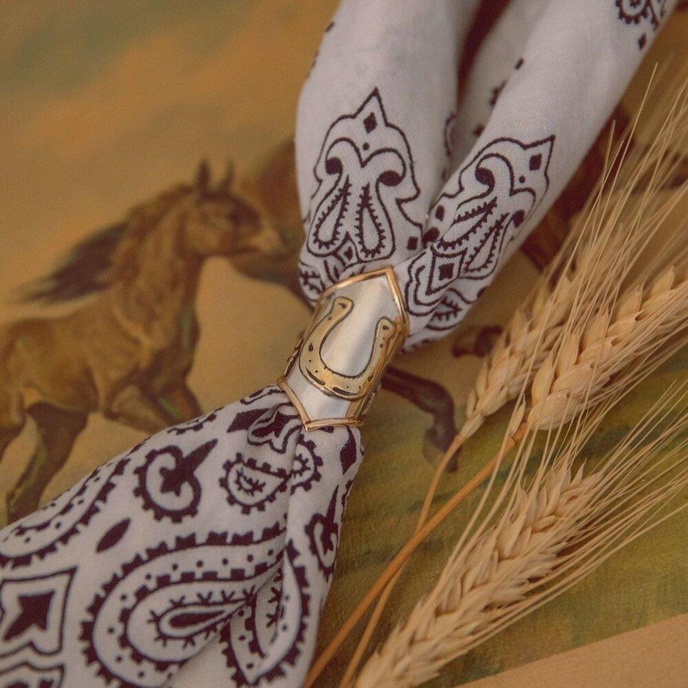 Horse Shoe Scarf Slide